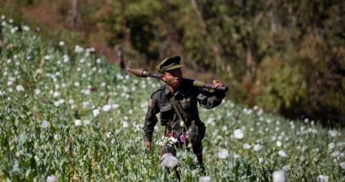 Myanmar Poppy soldier